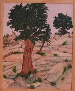 arbre solitude rocher